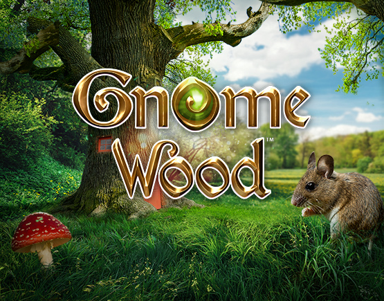 Gnome Woods slots